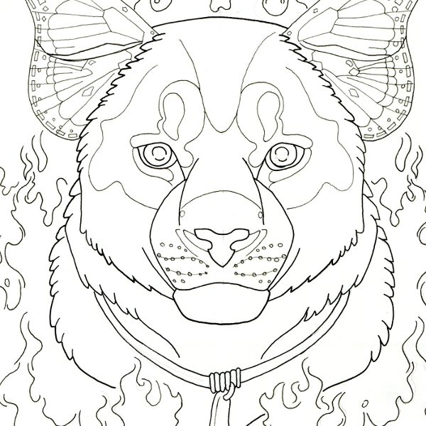Coloring Sheet Of A Catamount Coloring Pages